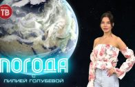 Погода Донецк 23.06.2021