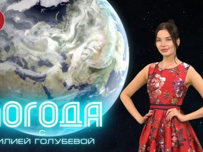 Погода Донецк 24.06.2021