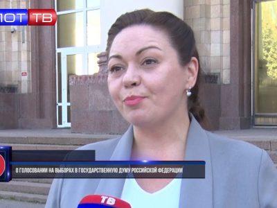 Елена Шишкина о голосовании на выборах в Государственную Думу Российской Федерации. Комментарий дня
